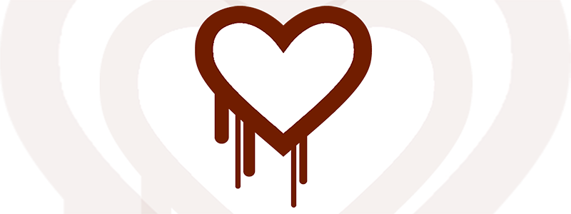 Heartbleed Security Vulnerability Endangers User Data on the Internet